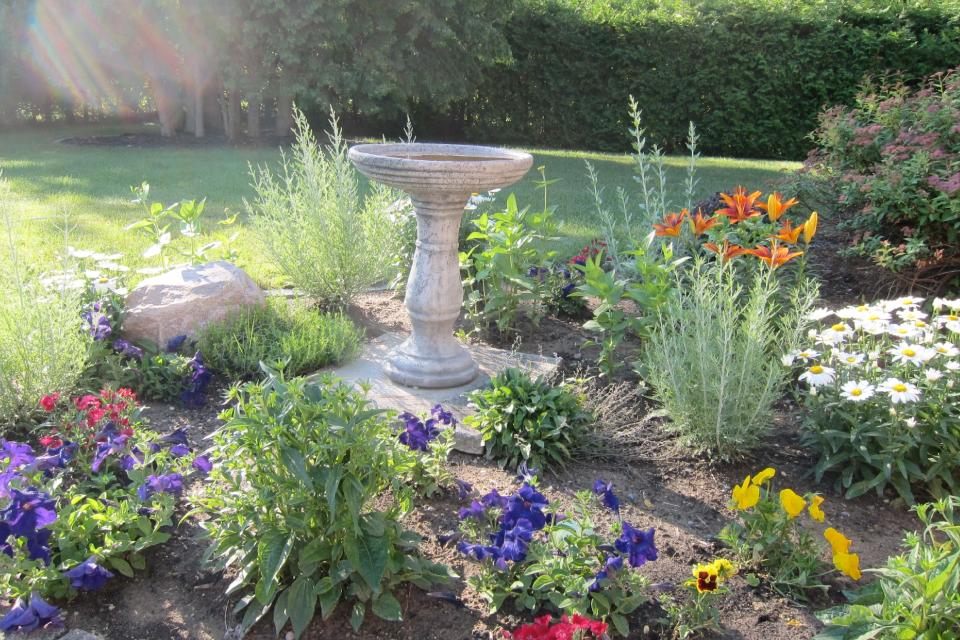 Holly's garden in spring